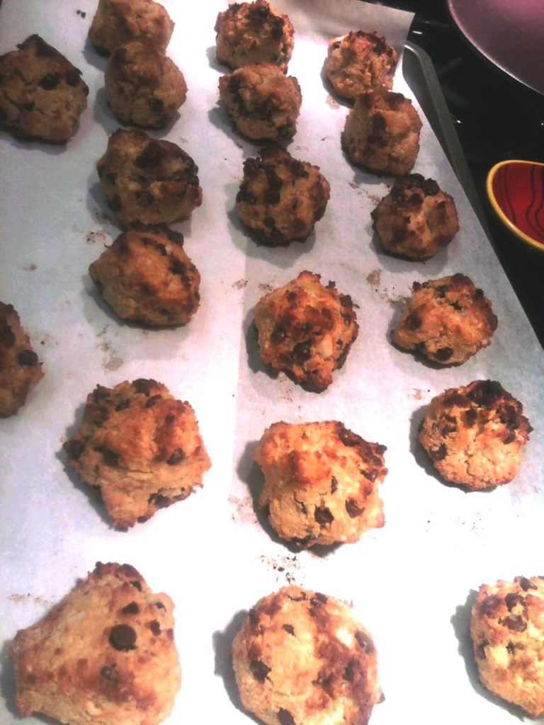 PaleOMG Coconut Chocolate Chip Cookies