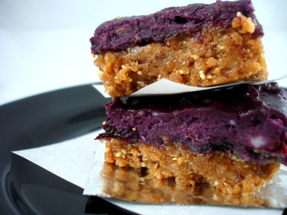 blueberry bars1