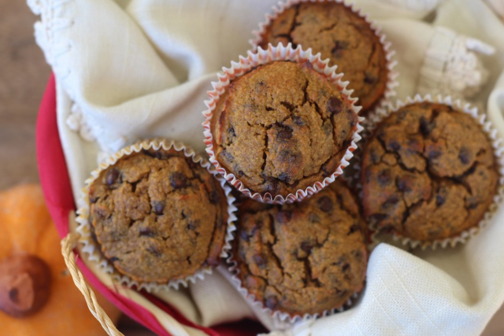 PaleOMG Pumpkin Chocolate Chip Muffins