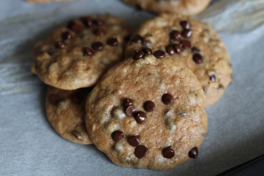 PaleOMG Sweet Potato Protein Chocolate Chip Cookies