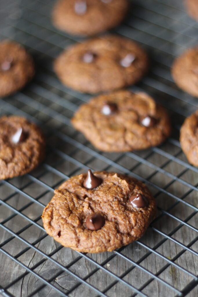 PaleOMG Protein Pumpkin Chocolate Chip Cookies