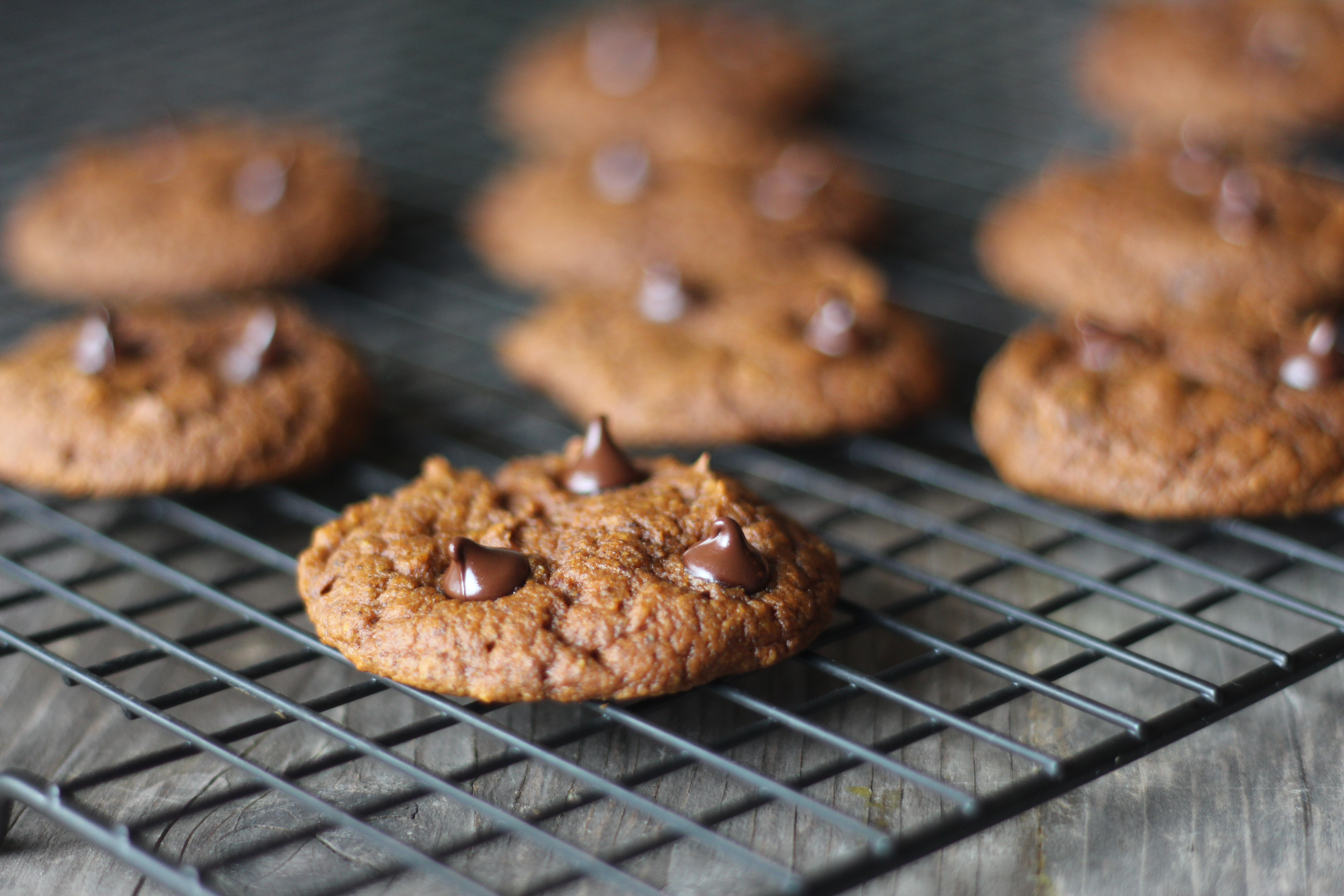 destiny 2 chocolate ship cookies recipe