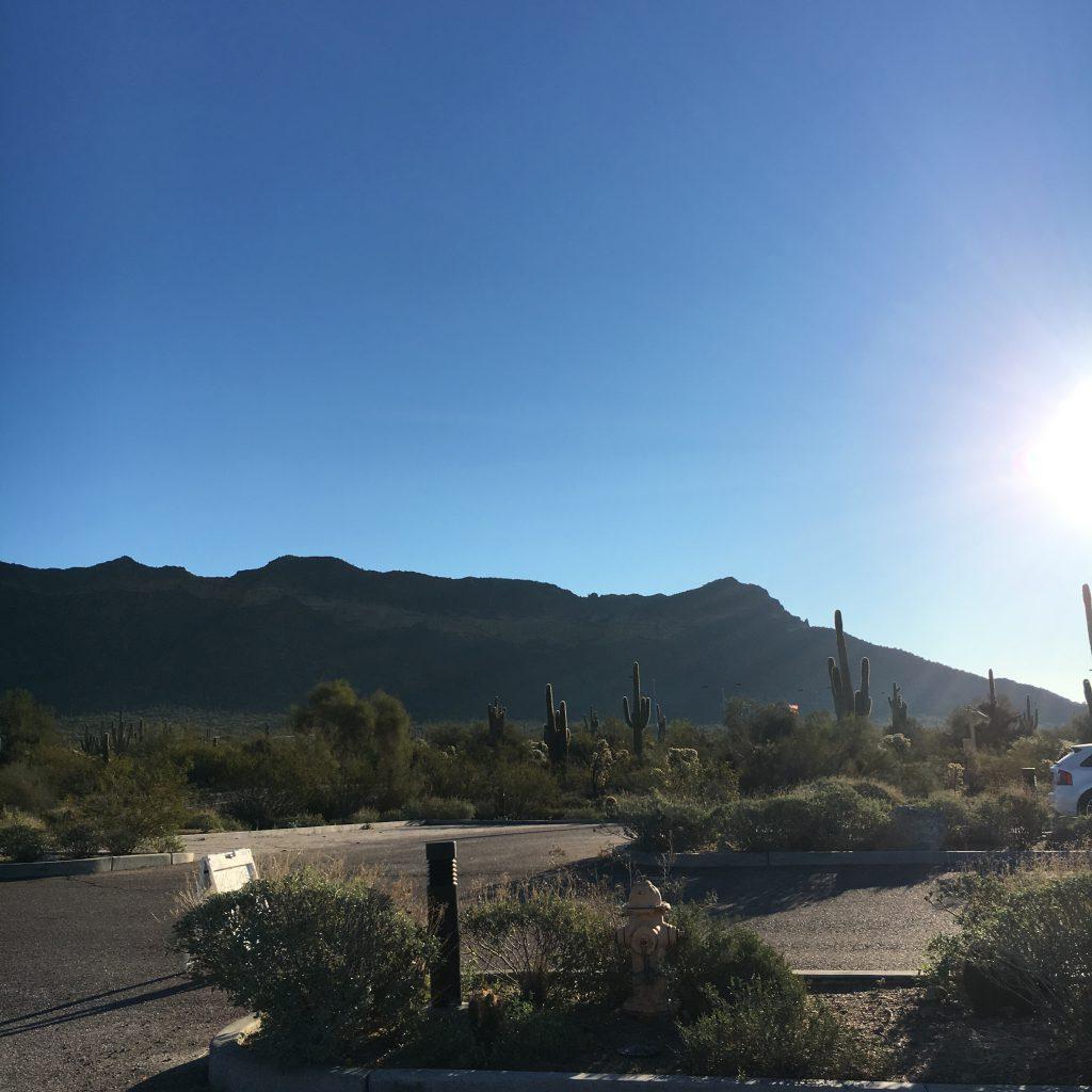 PaleOMG Trip to Phoenix