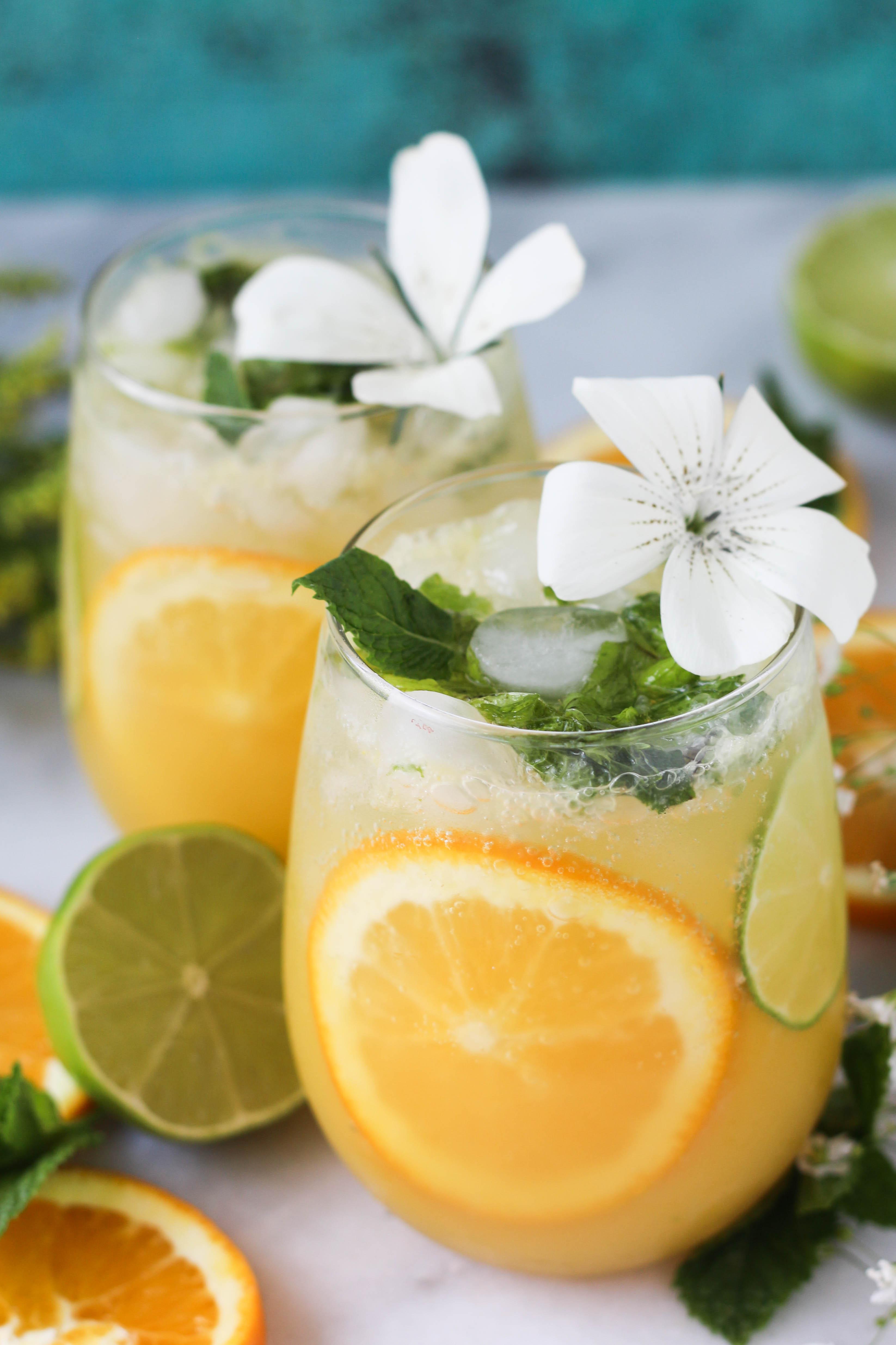 PaleOMG Citrus Mint Vodka Spritzer