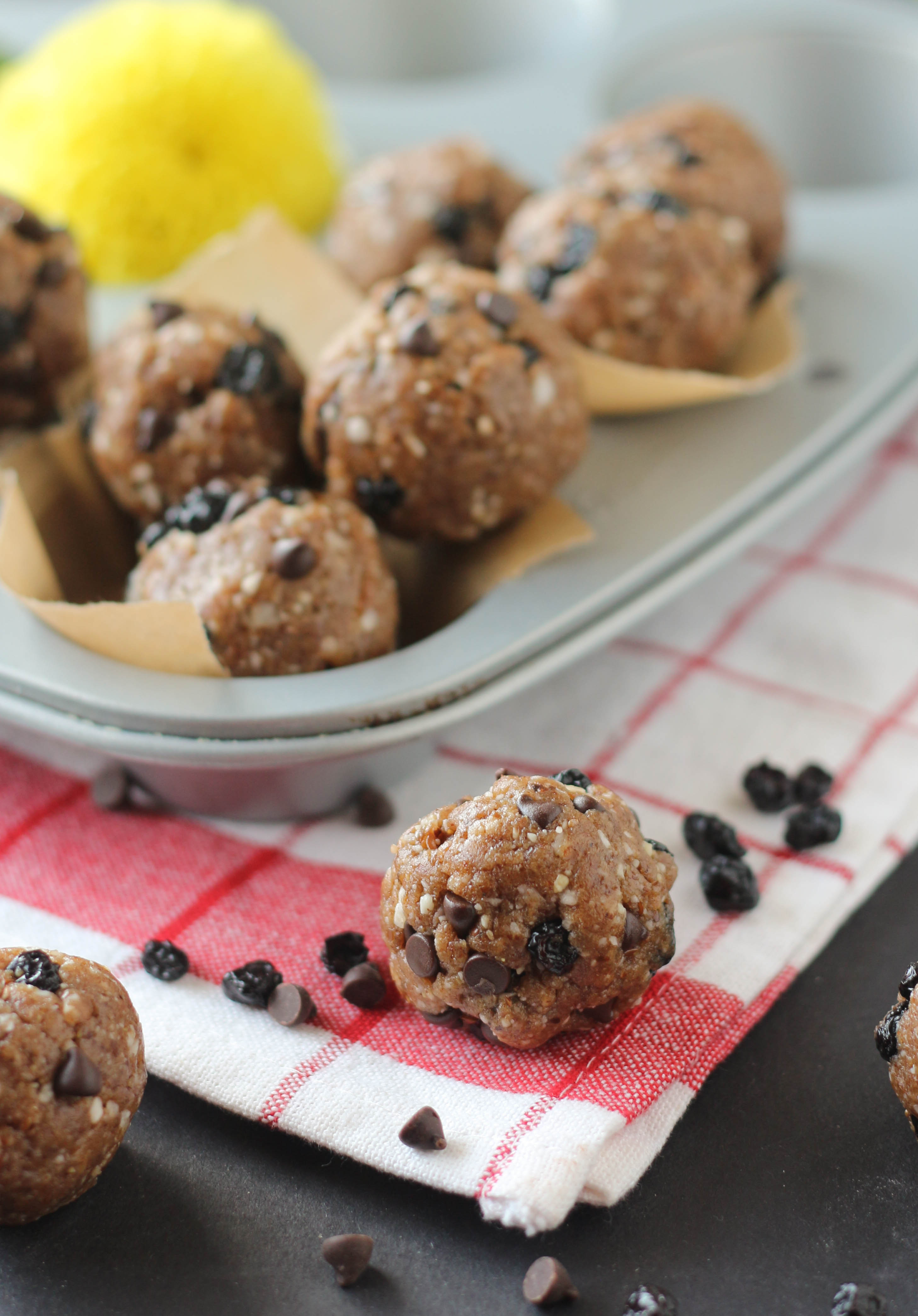 PaleOMG Blueberry Chocolate Chip Muffin Energy Balls
