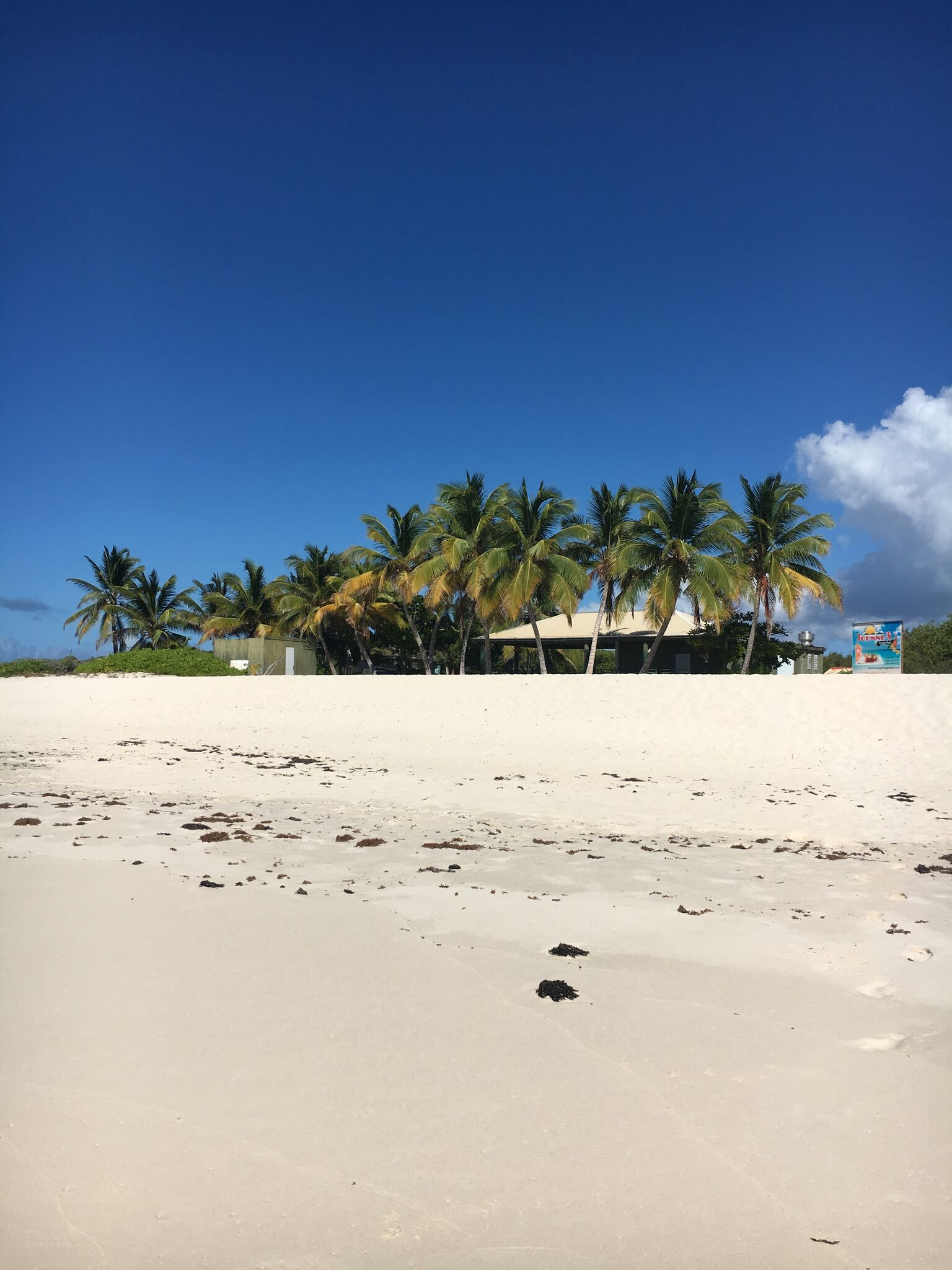 PaleOMG Travel - The HANDS DOWN Best Way to See The Caribbean