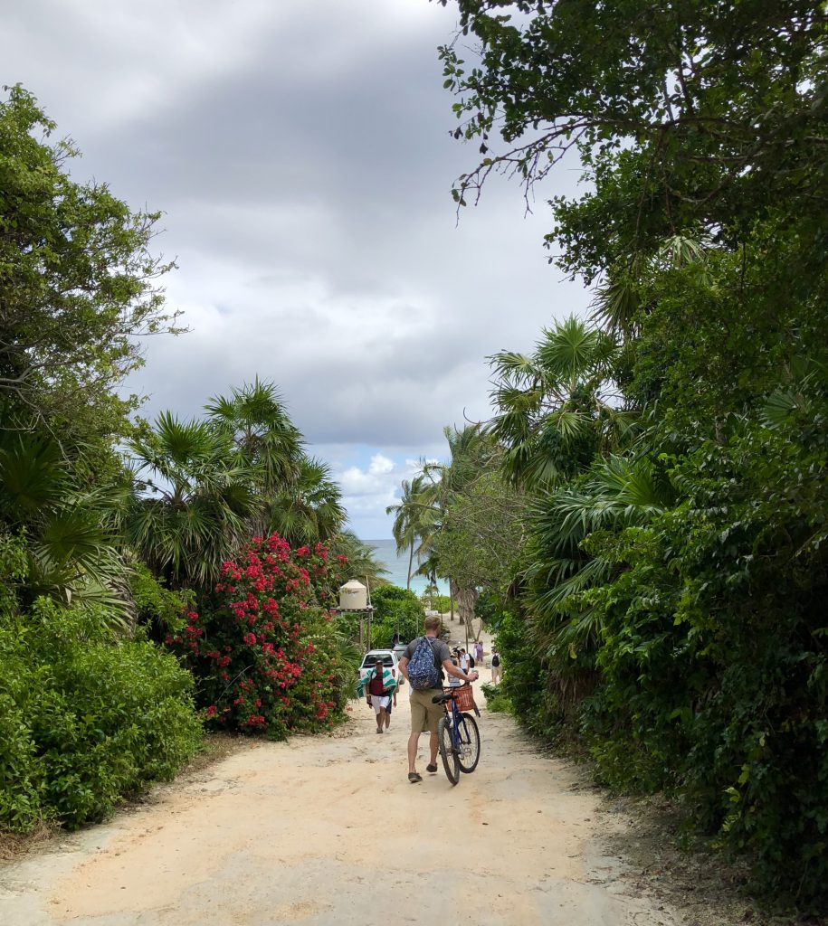PaleOMG - The Good and The Bad in Tulum