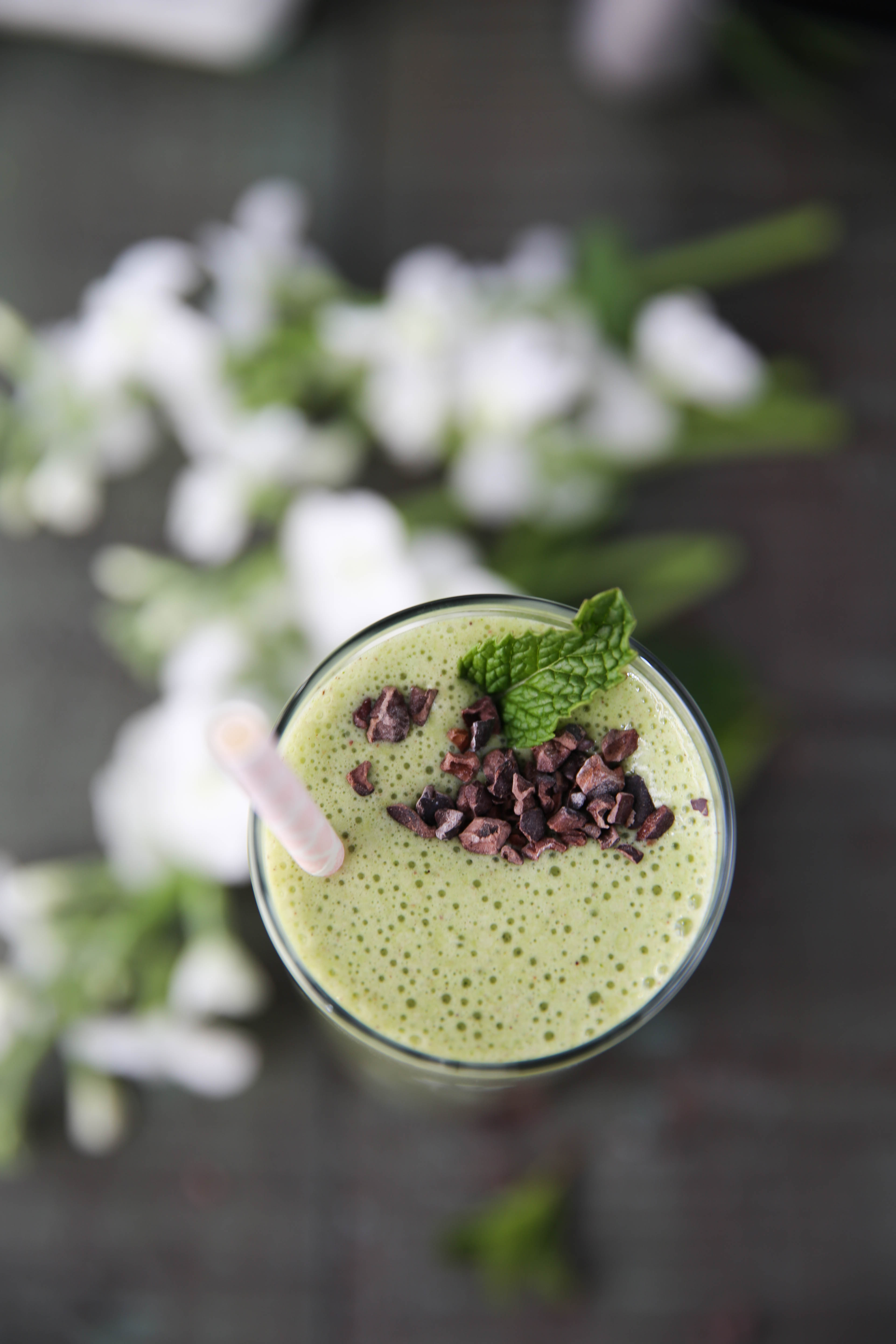 PaleOMG Mint Chocolate Chip Collagen Shake