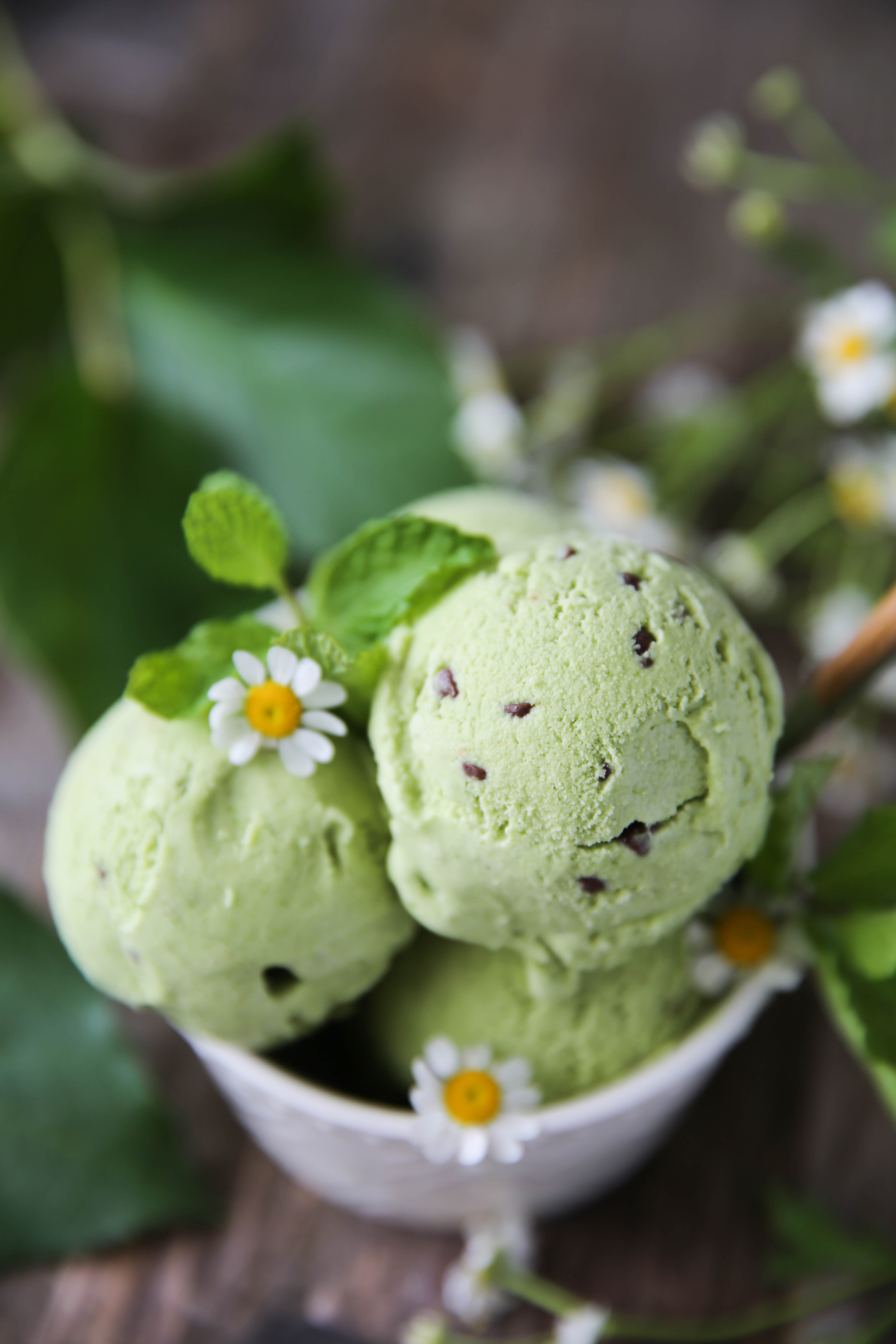 PaleOMG Mint Chocolate Chip Ice Cream (+cooking video!)