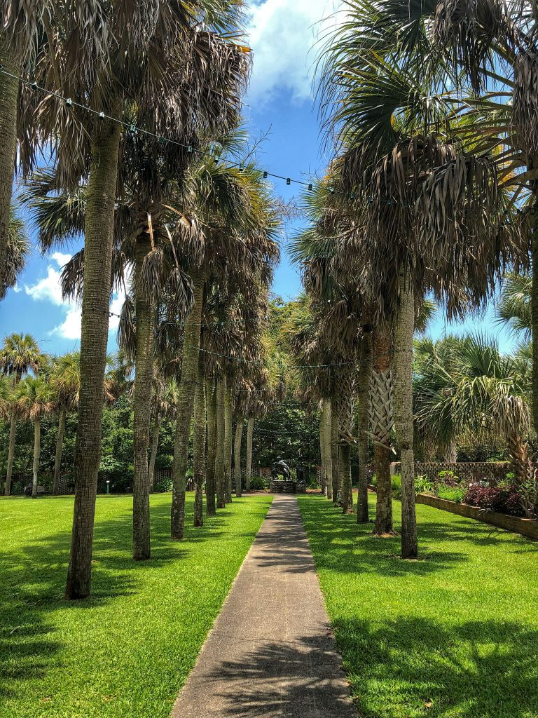 PaleOMG - Eating Gluten Free & Staying Active in Myrtle Beach