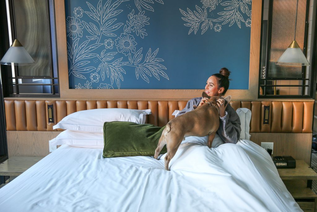 PaleOMG Denver Series: Newly Renovated Dog-Friendly Hotel Monaco
