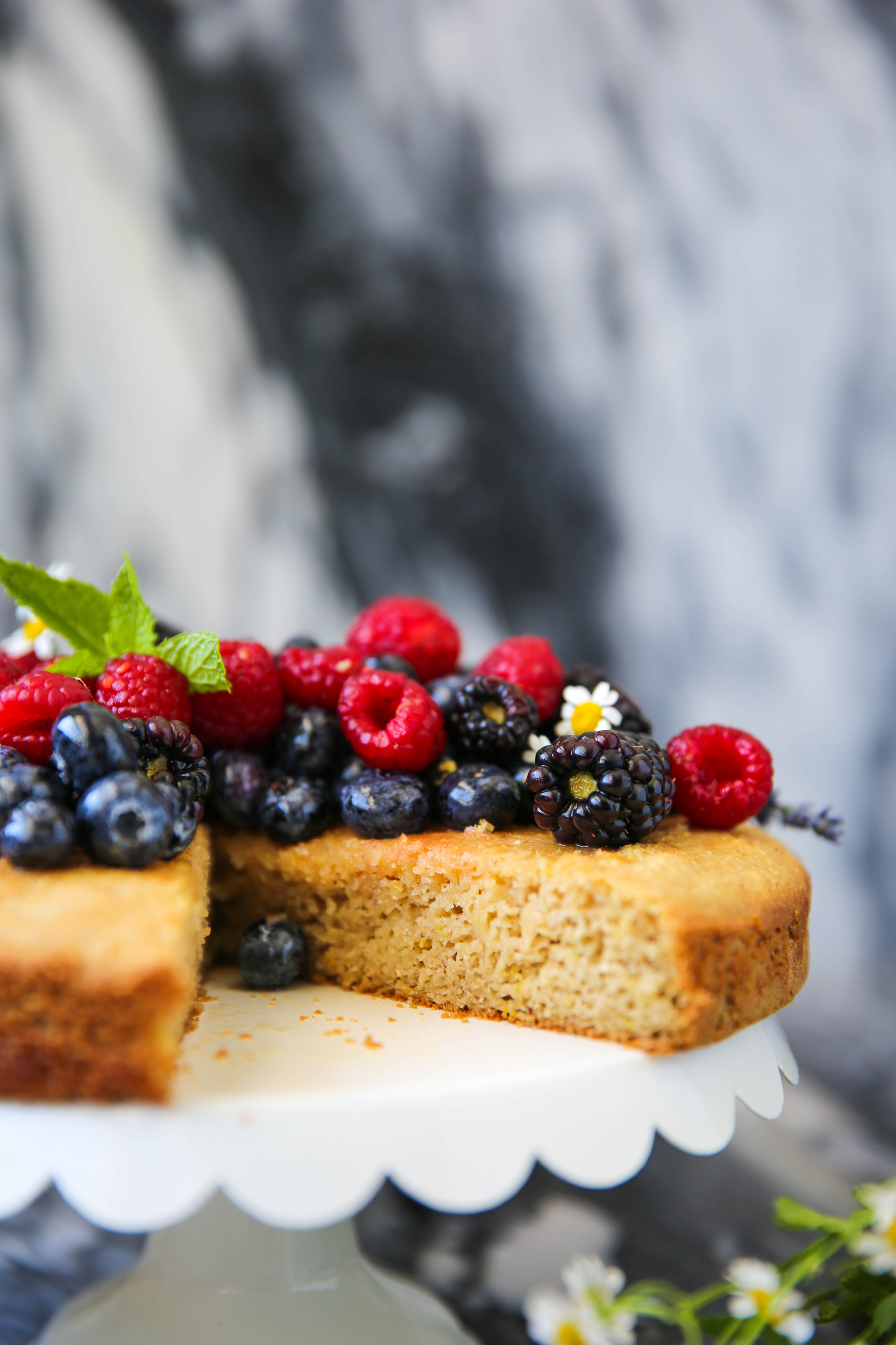 PaleOMG Simple Berry Cake