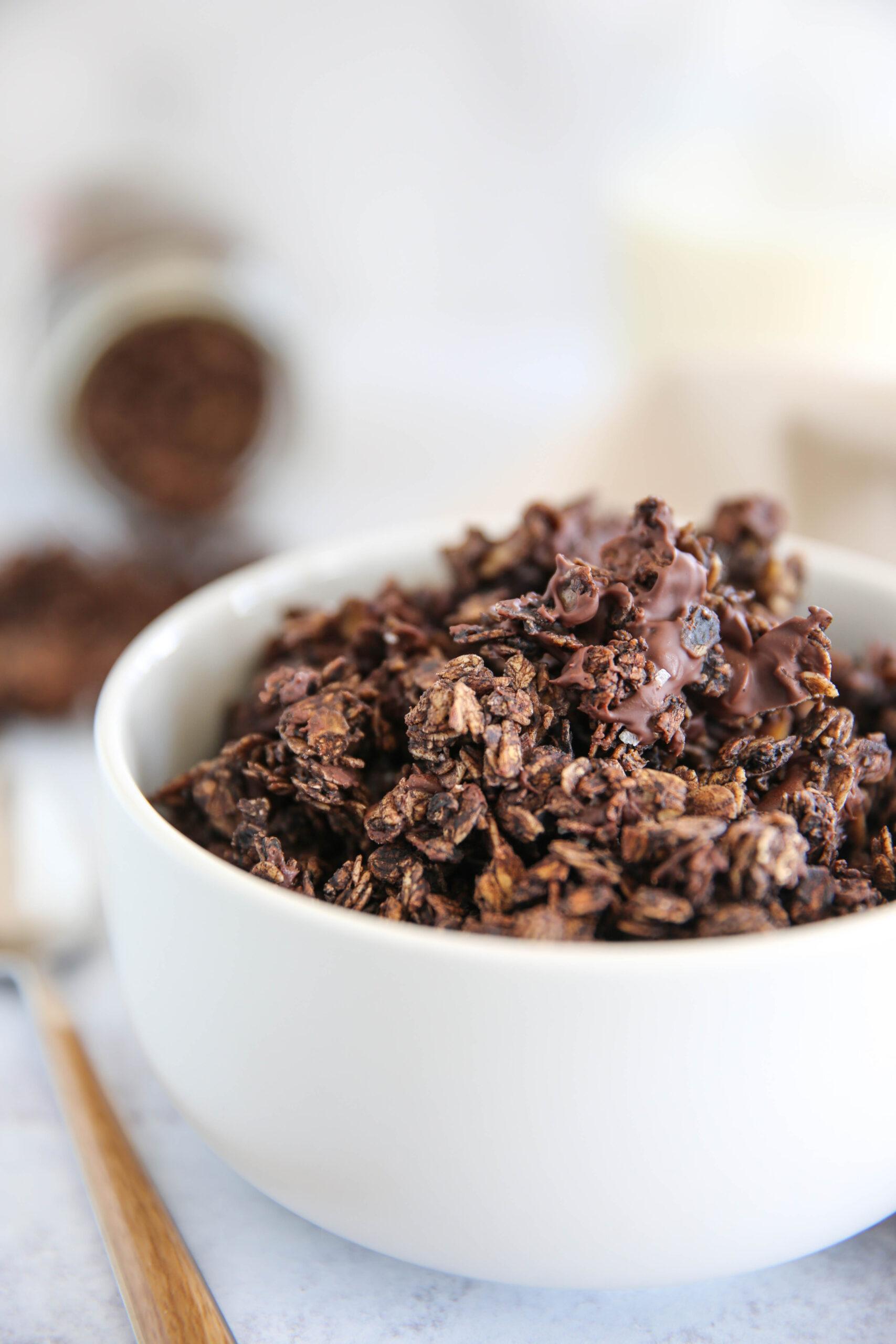 PaleOMG Chocolate Sea Salt Granola